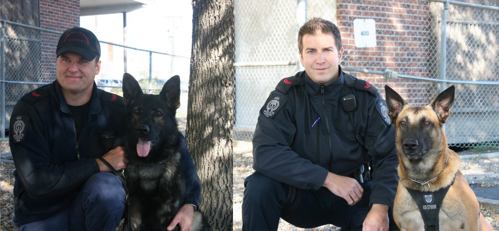 Cpl Tunison and Axle (left image) placed 4th in the Evidence competition and 1st in the Compound Search competition. Cpl Lorence and Kruz placed 5th in Compound Search, and 1st in Evidence and placed 2nd Overall in the CPCA Trials.